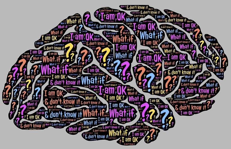 brain-962588