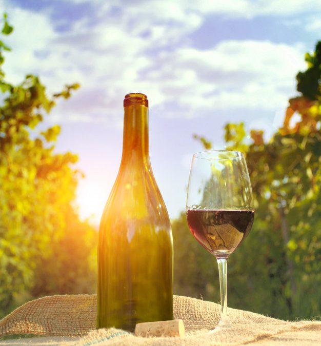 Renove a adega para a primavera: a estação das flores pede vinhos mais leves e frutados