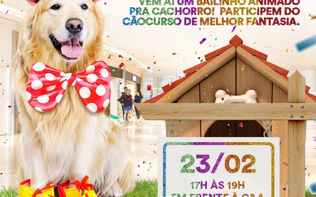 Desfile pet e atrações para as crianças marcam carnaval no Shopping Park Europeu