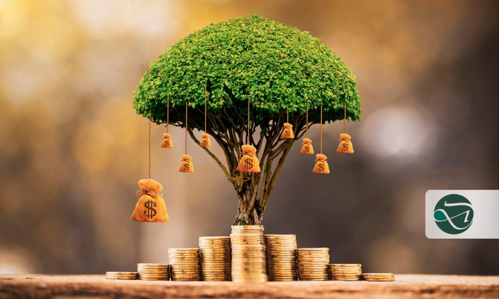 Brasileiros nos EUA: entenda como funciona a aposentadoria